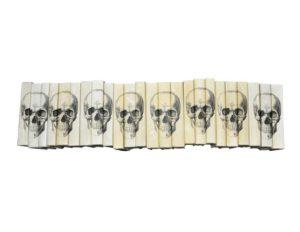 Set of 6 Ivory Skull Books